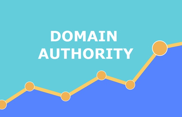 What is The Website Authority_image