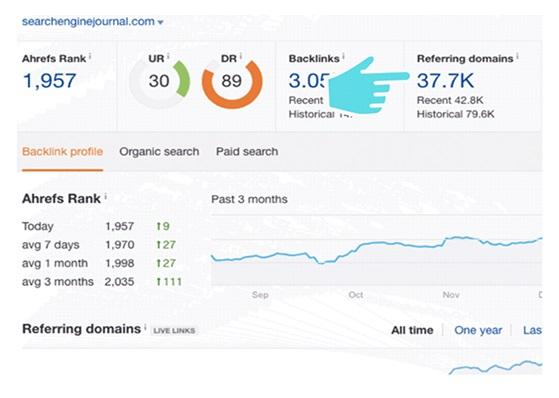 organic search traffic_image