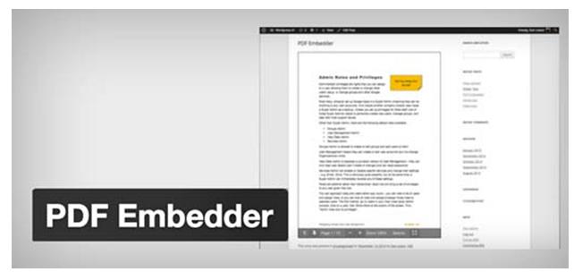 pdf Embeds_image